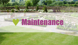 Landscaping Stroud - Anderson Norman Landscapes - Garden Maintenance