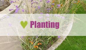 garden landscape services - planting